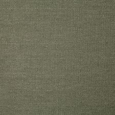 Fern Solid Drapery and Upholstery Fabric by Pindler