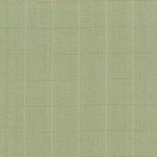 Thyme Drapery and Upholstery Fabric by Kasmir