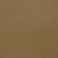 Buckskin Drapery and Upholstery Fabric by Pindler