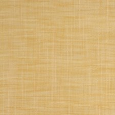Cornsilk Drapery and Upholstery Fabric by RM Coco