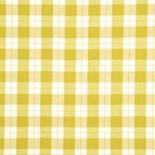 Apple Check Drapery and Upholstery Fabric by Baker Lifestyle