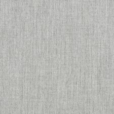 Comet Drapery and Upholstery Fabric by Silver State