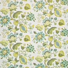Parrot Drapery and Upholstery Fabric by Kasmir