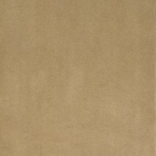 Latte Drapery and Upholstery Fabric by Silver State