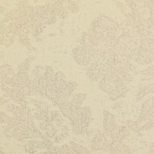 White/Ivory Damask Drapery and Upholstery Fabric by Kravet