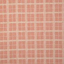 Cameo Check Drapery and Upholstery Fabric by Pindler