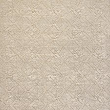 Dunes Drapery and Upholstery Fabric by Silver State