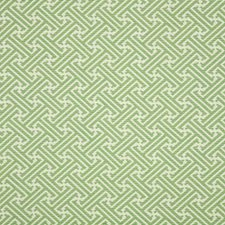 Shamrock Drapery and Upholstery Fabric by Silver State