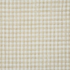 Beach Check Drapery and Upholstery Fabric by Pindler
