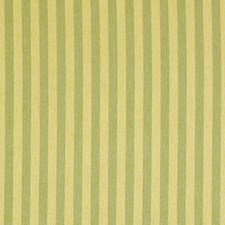 Citrus Drapery and Upholstery Fabric by Robert Allen