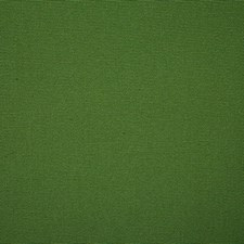 Grass Solid Drapery and Upholstery Fabric by Pindler