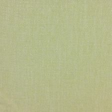 Green/White Traditional Drapery and Upholstery Fabric by JF