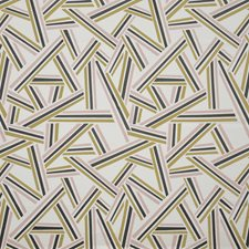 Chic Drapery and Upholstery Fabric by Maxwell