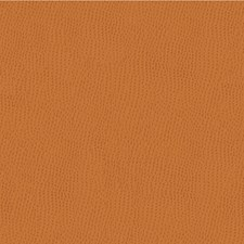 Rust Animal Skins Drapery and Upholstery Fabric by Kravet