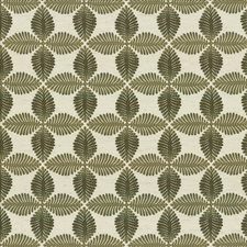 Fern Drapery and Upholstery Fabric by Kasmir