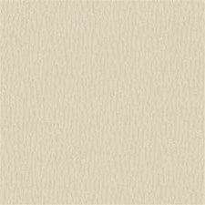 White Solid W Drapery and Upholstery Fabric by Kravet