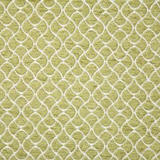 Kiwi Drapery and Upholstery Fabric by Pindler