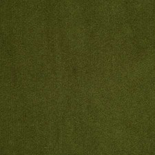 Olive Solid Drapery and Upholstery Fabric by Pindler