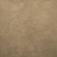 Buckskin Drapery and Upholstery Fabric by Kasmir
