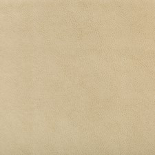 Beige Faux Leather Drapery and Upholstery Fabric by Kravet