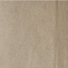 Mica Metallic Drapery and Upholstery Fabric by Kravet