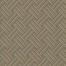 Tea Drapery and Upholstery Fabric by Kasmir