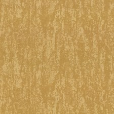 China Gold Drapery and Upholstery Fabric by Kasmir