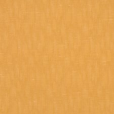 Buckskin Drapery and Upholstery Fabric by RM Coco