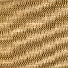 Pale Brass Drapery and Upholstery Fabric by Scalamandre