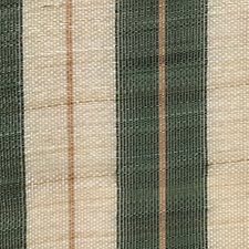 Green/Beige Drapery and Upholstery Fabric by Scalamandre