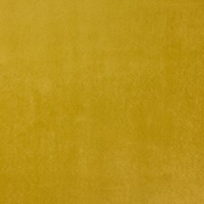 Gold Rush Drapery and Upholstery Fabric by RM Coco