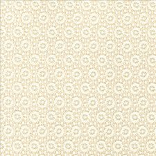 Alabaster Drapery and Upholstery Fabric by Kasmir