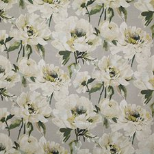 Dove Traditional Drapery and Upholstery Fabric by Pindler