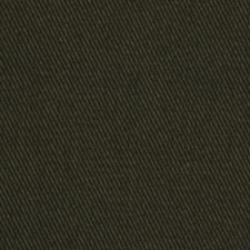 Polo Drapery and Upholstery Fabric by Robert Allen