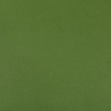 Bonsai Solids Drapery and Upholstery Fabric by Kravet