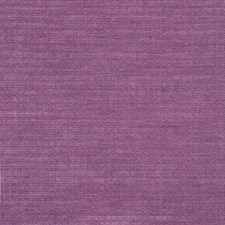 Violet Drapery and Upholstery Fabric by Maxwell