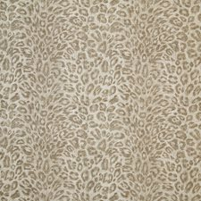 Sandstone Drapery and Upholstery Fabric by Pindler