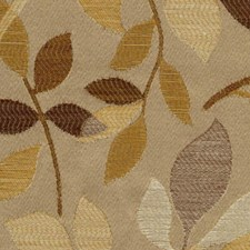 Nature Drapery and Upholstery Fabric by RM Coco