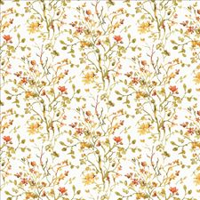 Honeysuckle Drapery and Upholstery Fabric by Kasmir