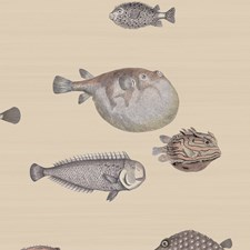 Taupe Print Wallcovering by Cole & Son Wallpaper