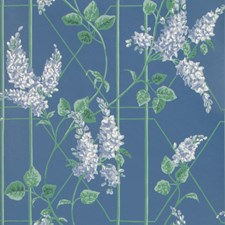 P Blue/Jade/C Blue Print Wallcovering by Cole & Son Wallpaper