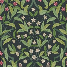 Rose/Grn/Viridian Botanical Wallcovering by Cole & Son Wallpaper