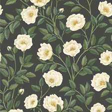 Crm/Fgrn/Ch Botanical Wallcovering by Cole & Son Wallpaper