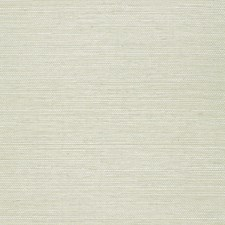Aquamarine Wallcovering by Schumacher Wallpaper