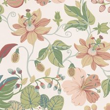 Pink/Orange/Rust Traditional Wallcovering by JF Wallpapers