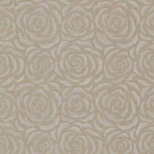 671-68520 Rosette Brass Rose Pattern by Brewster