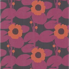 Blk/Crm Wallcovering by Cole & Son Wallpaper