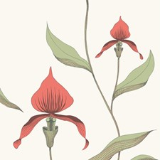 Red/White Wallcovering by Cole & Son Wallpaper