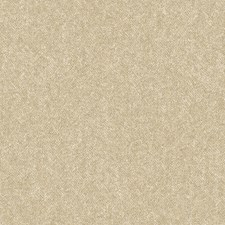 Eggshell/Tan/Brown Textures Wallcovering by York