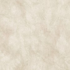 Neutral Transitional Wallpaper Wallcovering by Brewster